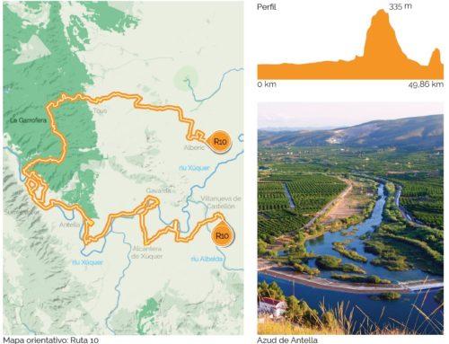 Camino de la Naranja